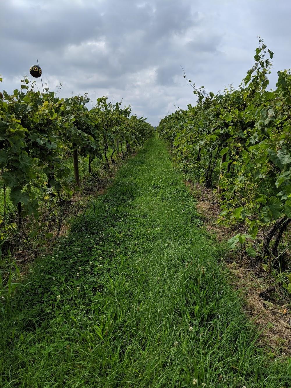 Knapp Winery & The Vineyard Restaurant (Restaurant is seasonal)